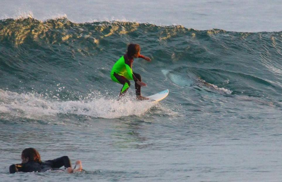 10-year-old surfer rides over great white. Dad captures the photo!