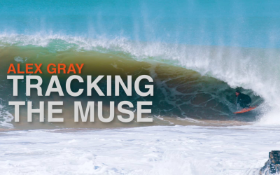 Tracking the Muse