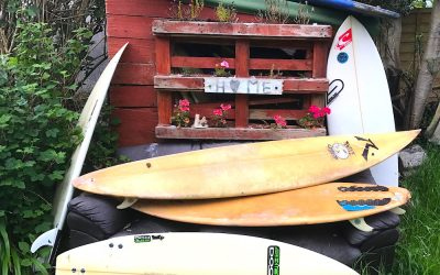 The Great Carve Shed giveaway