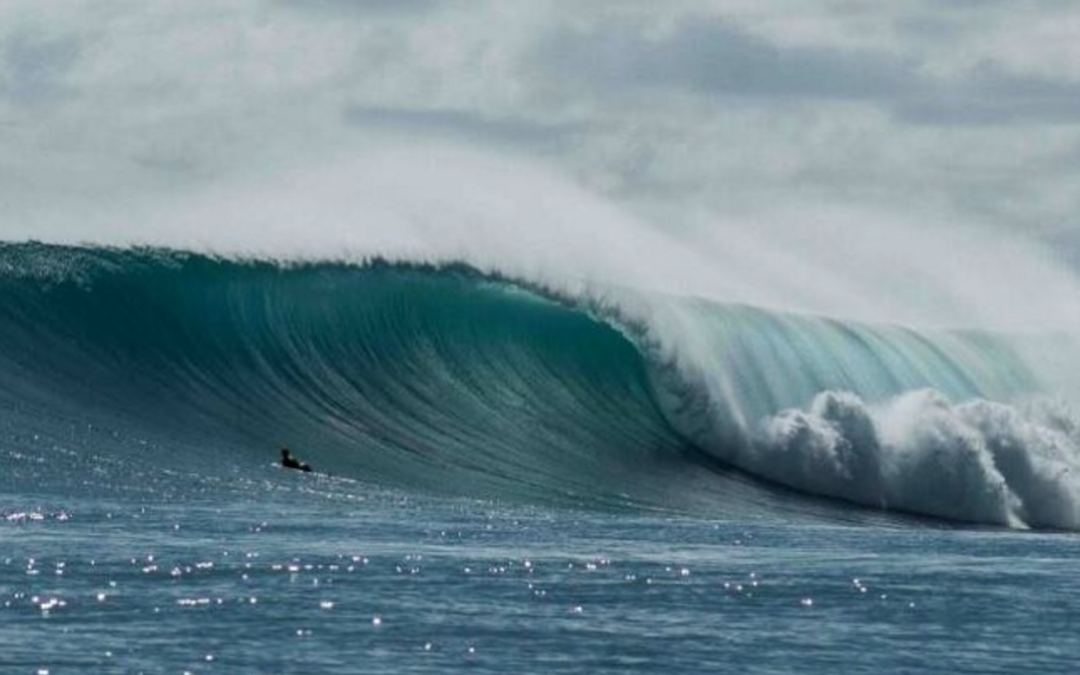 From the front line – Indo is going berserk right now!