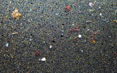 Plastic microbeads ban comes into force