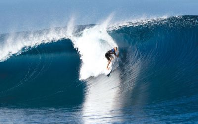 The Carve Summer Wetsuit Guide