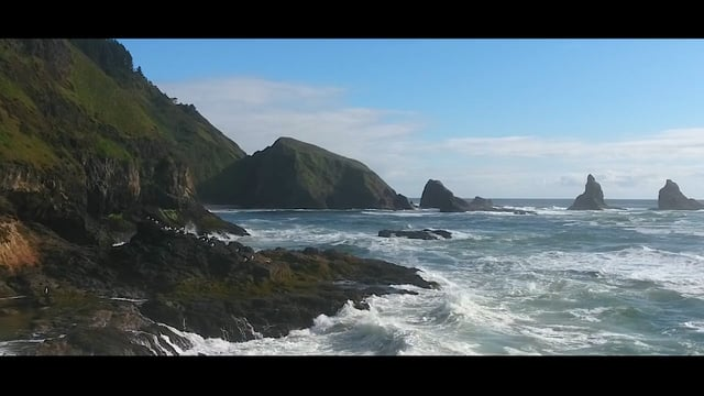 Out Of Open Ocean The Pacific North West Carvemag Com