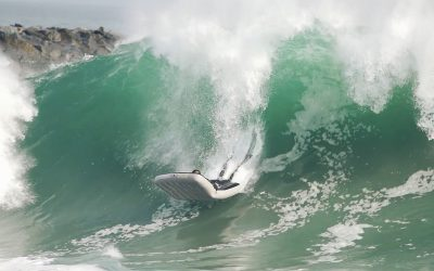 The Matadors of the Wedge