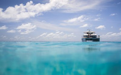 Luxury Surf Travel