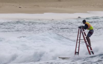 Can you surf a ladder?