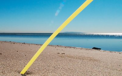 UK Government bans plastic straws, stirrers and cotton buds in England by 2020 to reduceoceanpollution