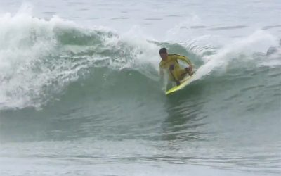 Finless At Lowers