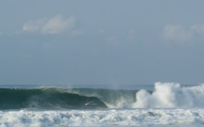 TWIN FIN BARRELS ON ANOTHER LEVEL
