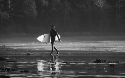 Carve Winter Wetsuit Guide 2019