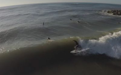 One Day at Home, surfing Texas