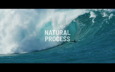 Natural Process – Albee Layer and friends.