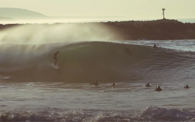 GLASSY AND PERFECT WEDGE