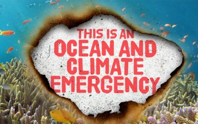 Ocean And Climate Emergency